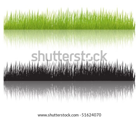 Grass fringes, vector illustration
