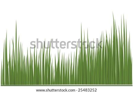 grass green - stock vector