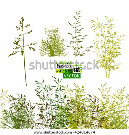 grass horizontal line. seamless background. Vector - stock vector