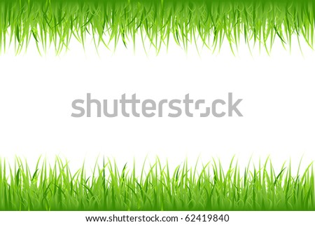 Grass On White Background, Vector Illustration - stock vector