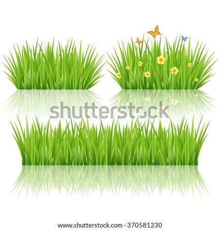 Grass set, vector - stock vector