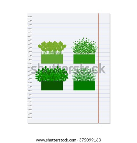 grass, shrubs. illustration on a sheet of paper from a notebook