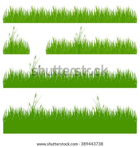 grass, shrubs.  Set of grass vector illustration. Green grass and bushes. - stock vector