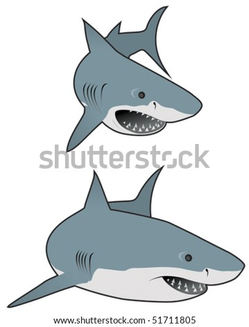 Great white sharks - stock vector