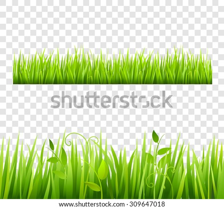 Green and bright grass border tileable transparent with plants flat isolated  vector illustration  - stock vector