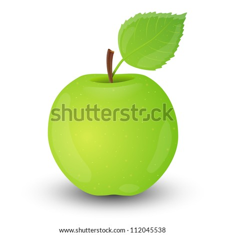 Green apple isolated on white background. Vector illustration. - stock vector