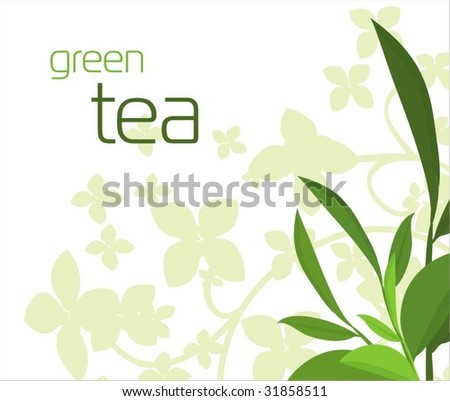 Green background with green tea leaves - stock vector