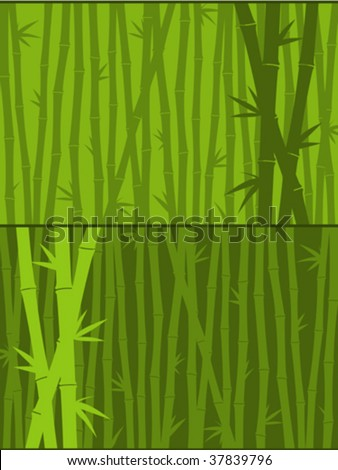 Green bamboo background - vector - stock vector