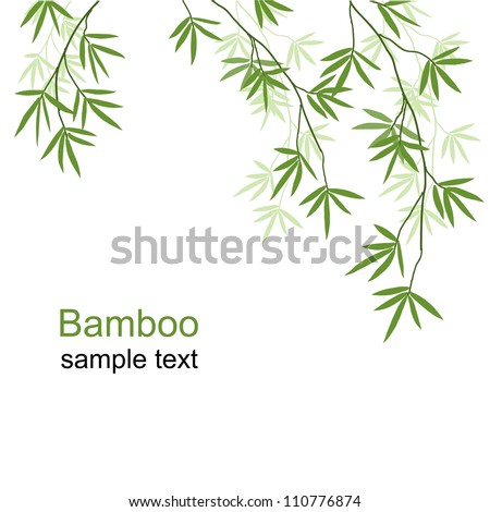 Green bamboo branches on a white background - stock vector
