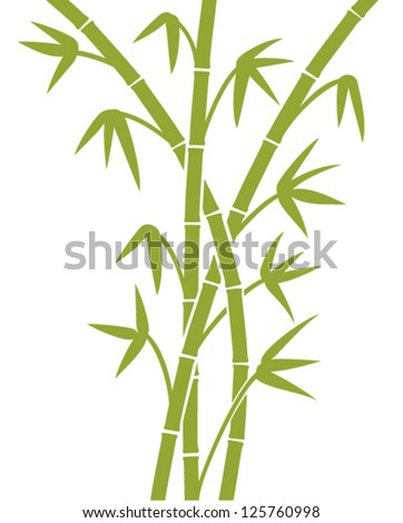 green bamboo stems (bamboo vector illustration, bamboo leaves, bamboo branches, silhouette of bamboo trees) - stock vector
