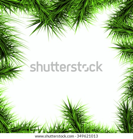 green branches of a Christmas tree isolated on a white background, vector