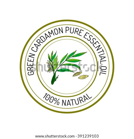 Green cardamon, essential oil label, aromatic plant. Vector illustration