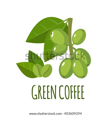 Green coffee vector logo  in flat style. Isolated object. Superfood green coffee icon. Vector illustration.
