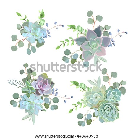 Green colorful succulent Echeveria vector design objects. Natural cactus bouquets in modern funky style. All elements are isolated and editable. - stock vector