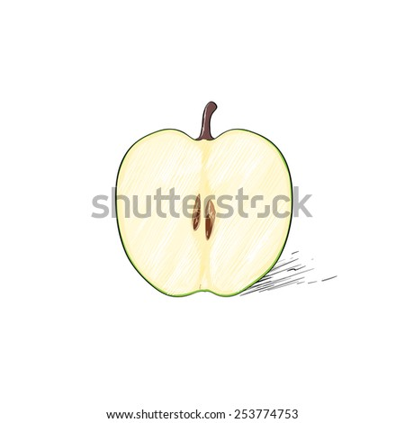 green cut half apple sketch draw isolated over white background