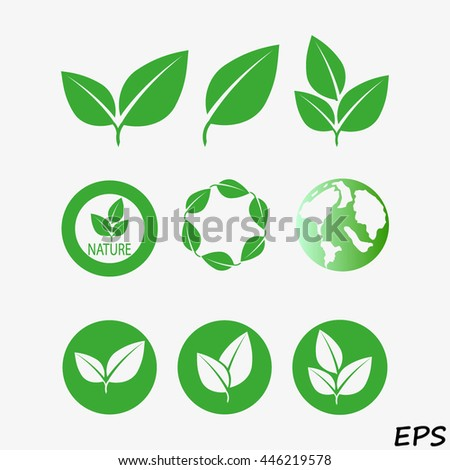 Green eco collection. Vector illustration. Leavs icon