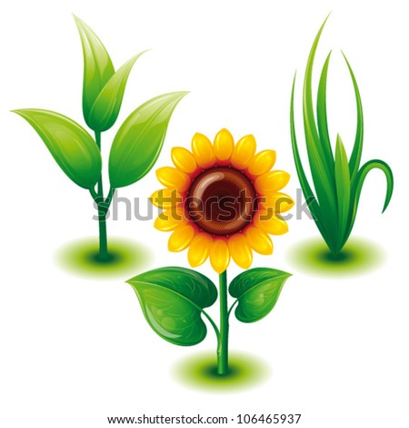 Green Eco Set with Green Grass, Sunflower, Sprout,Vector Illustration