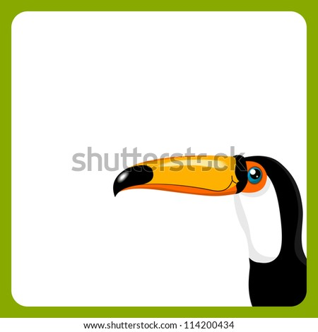 green frame with toucan on white background - kid vector illustration