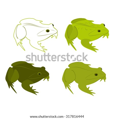 Green frogs set for your design. illustration of frog isolated on white background. Frog cartoon set. Frog vector set. Frog silhouette set. Line frogs vector set. Toad isolated. - stock vector