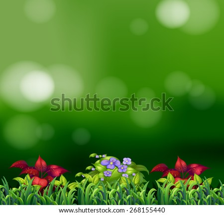 Green grass and beautiful flowers with green background