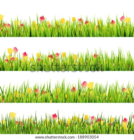 Green grass and beautiful spring flowers. And also includes EPS 10 vector - stock vector