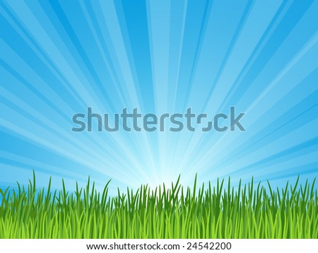 Green grass and blue sky - stock vector