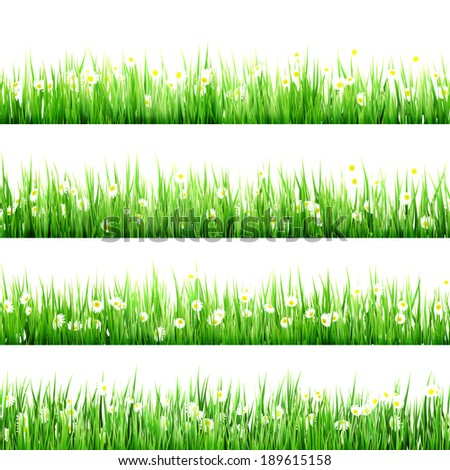 Green grass and chamomiles in the nature. And also includes EPS 10 vector - stock vector