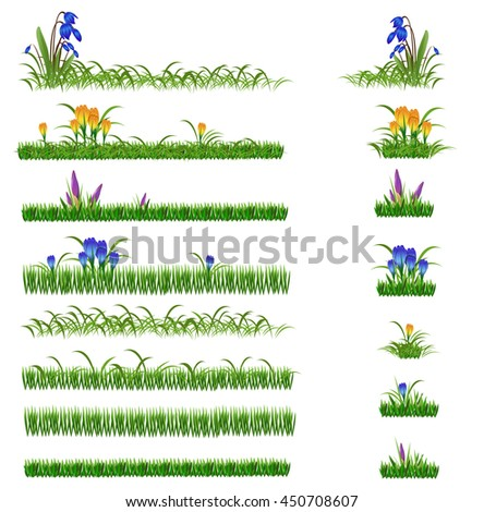 green grass and flowers set