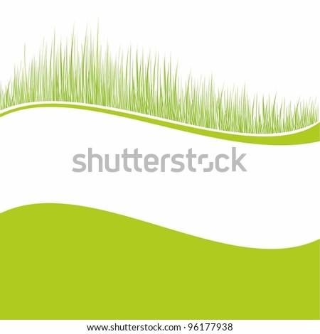 Green grass background - stock vector