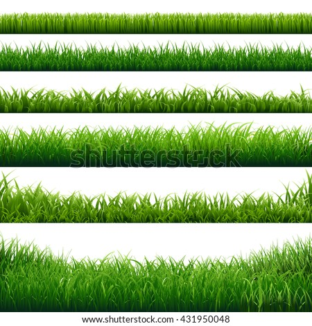 Green Grass Big Borders Collection, Isolated  Background, Vector Illustration  - stock vector