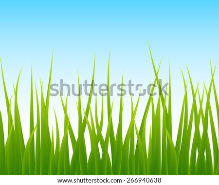 green grass, blue sky seamless background, vector illustration - stock vector