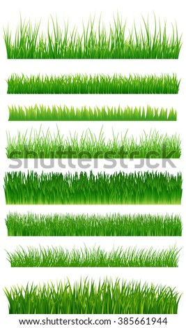 Green grass borders collection over white. Vector illustration
