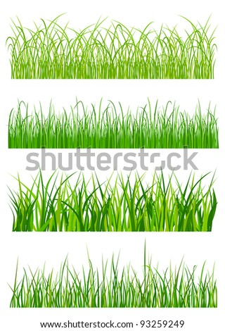 Green grass elements and patterns isolated on white background. Jpeg version also available in gallery - stock vector