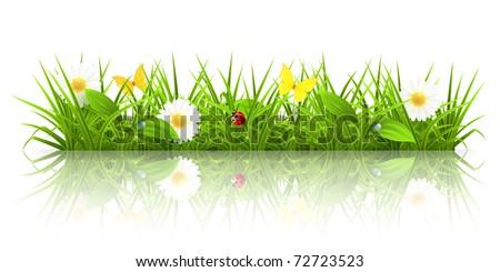 Green grass, 10eps - stock vector