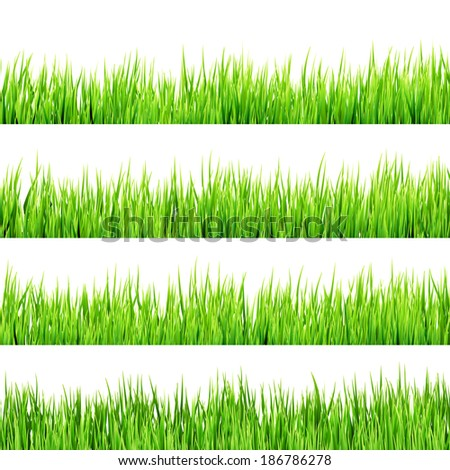 Green grass isolated on white background. And also includes EPS 10 vector - stock vector