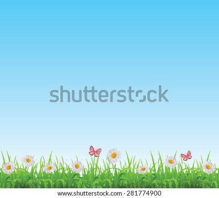 Green grass lawn with white chamomiles and butterflies background. Vector