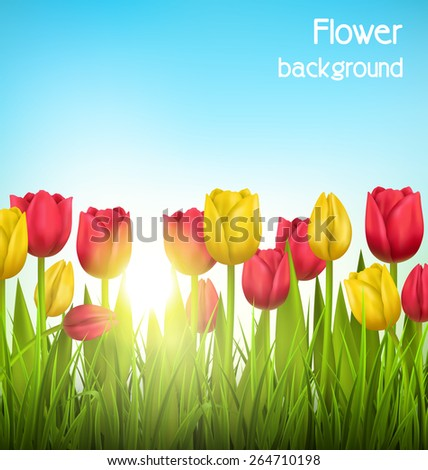 Green grass lawn with yellow and red tulips and sunlight on sky. Floral nature flower background - stock vector