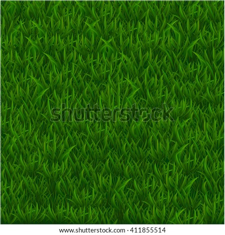 Green grass realistic textured background. Vector illustration - stock vector