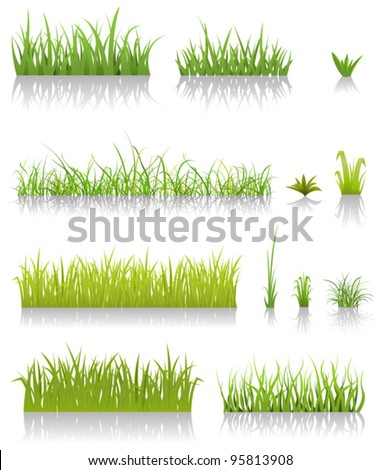 Green Grass Set/ Illustration of a set of various green blades of grass and other thin leaves for  spring or summer time - stock vector