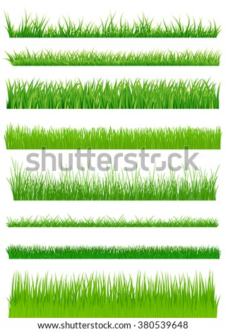 Green grass set. vector illustration - stock vector