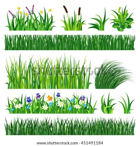 Green grass showing roots. Green grass with earth crosscut. Grass earth green, nature, background and green nature grass with earth. Ground dirt spring garden texture concept grow agriculture. - stock vector