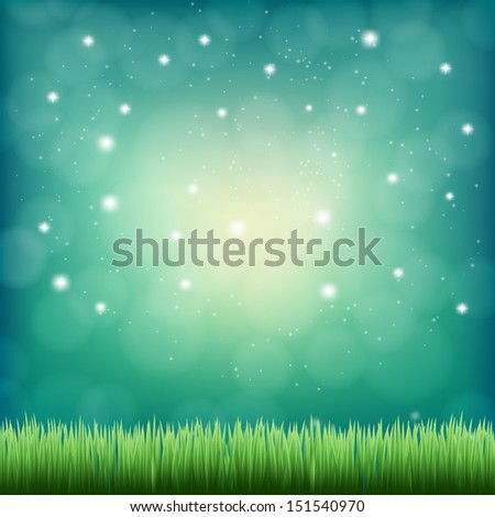 green grass under the night fantasy sky  - stock vector