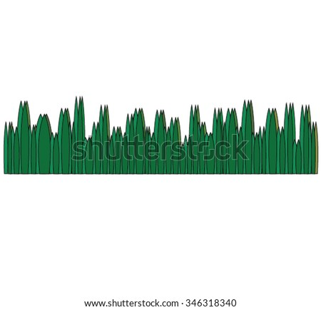 green grass vector on white background
