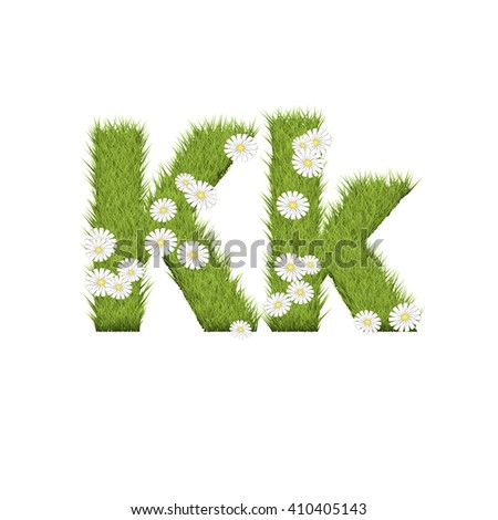 Green grass with chamomile flowers font isolated on white background. For design of nature, organic,ecology,health,spring and summer.