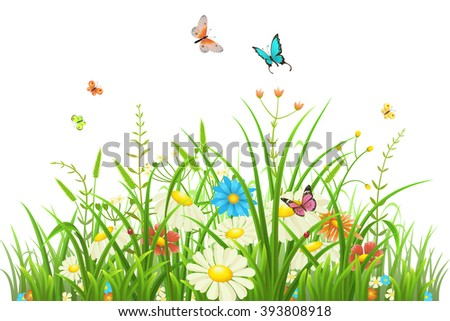 Green grass with flowers and butterflies isolated on white - stock vector