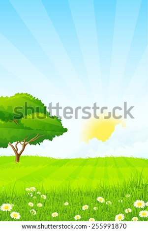 Green Grass with Tree, Sun, Clouds and Rays - stock vector
