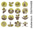 Green horticulture, planting or gardening agriculture process logo templates. Vector icons of growing tree or plant leaf, seed and garden implements for infographics