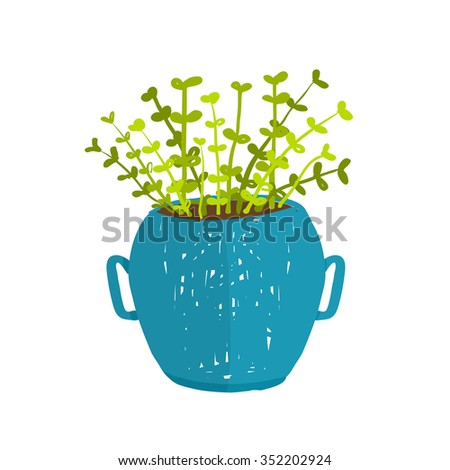 Green indoor leafy plant in pot. Leaf and house gardening, flowerpot and flora isolated object, houseplant design vector illustration