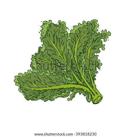 how to cook curly leaf kale