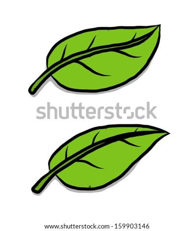 how to draw a cartoon leaf